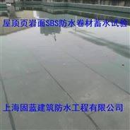 楼房屋顶渗漏水疑难杂症维修固蓝建筑防水